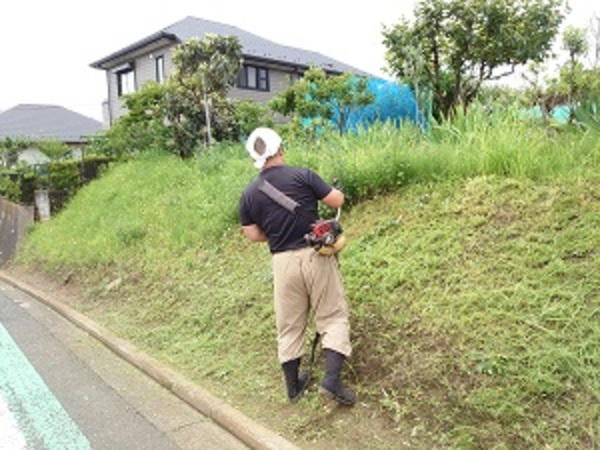 置き場周辺の草刈り